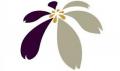 教育部紫錐花網站網址